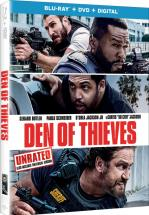 EL ROBO PERFECTO (DEN OF THIEVES) -BLU RAY + DVD -